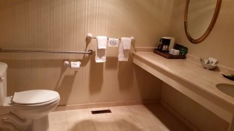 extra large bathroom area